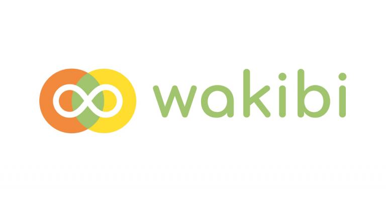Wakibi, Nederlands microfinancieringsplatform